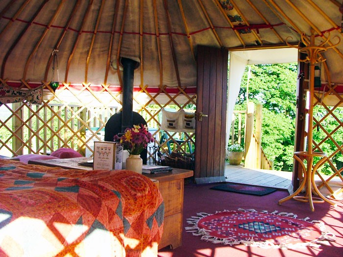 1. yurt in the paddock - showing clear roof crown - let the sun shine through