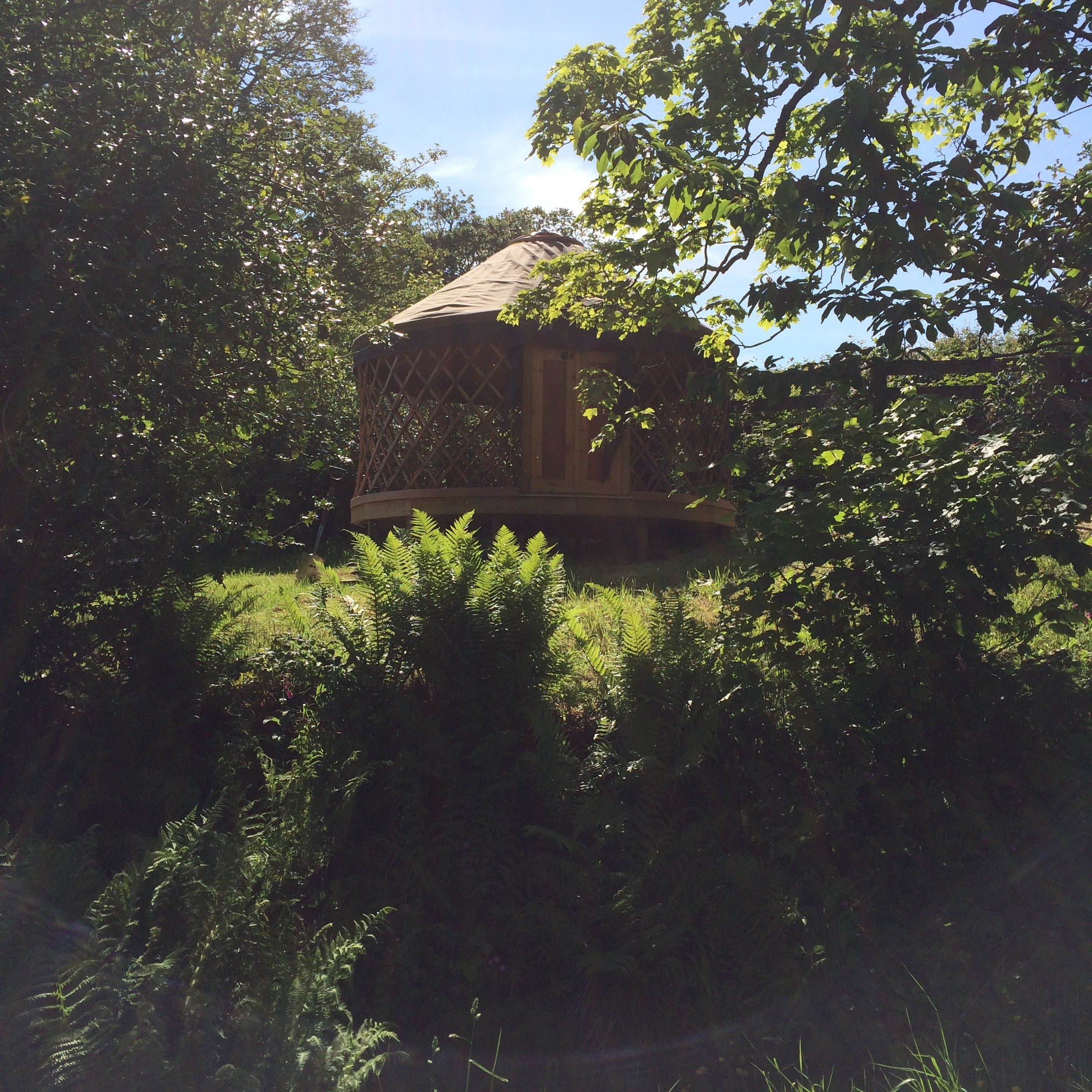 Little Yurt (1)