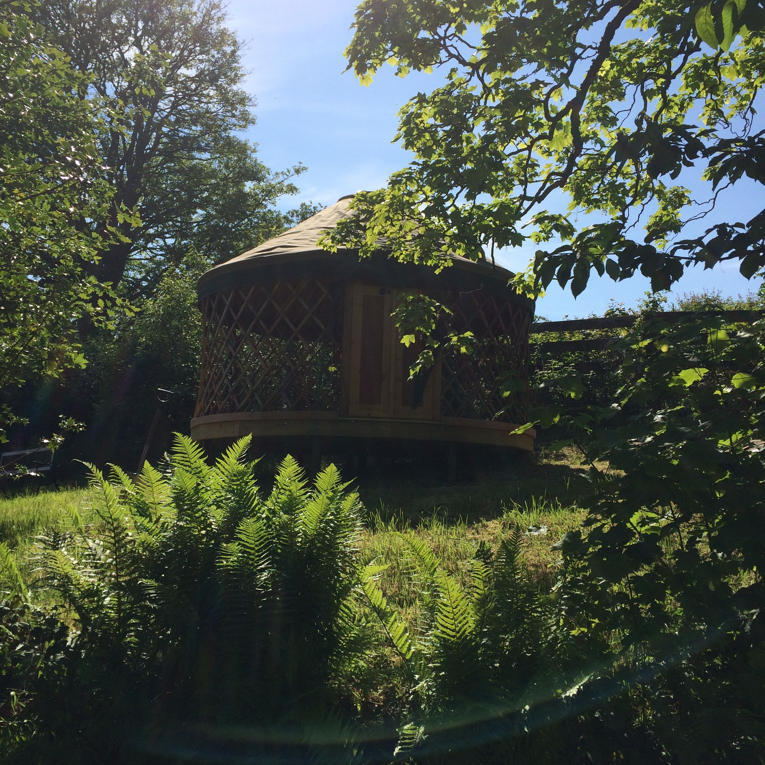 Little Yurt (2)