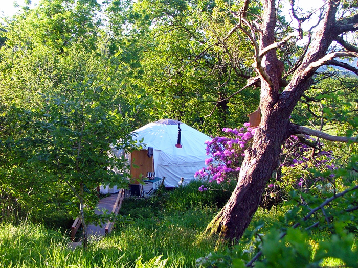 5. yurt by the stream 2